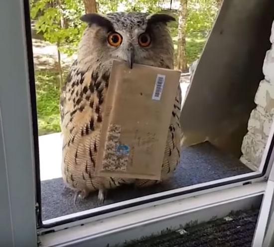 Ви дійсно бажаєте відписатися від нашої розсилки?