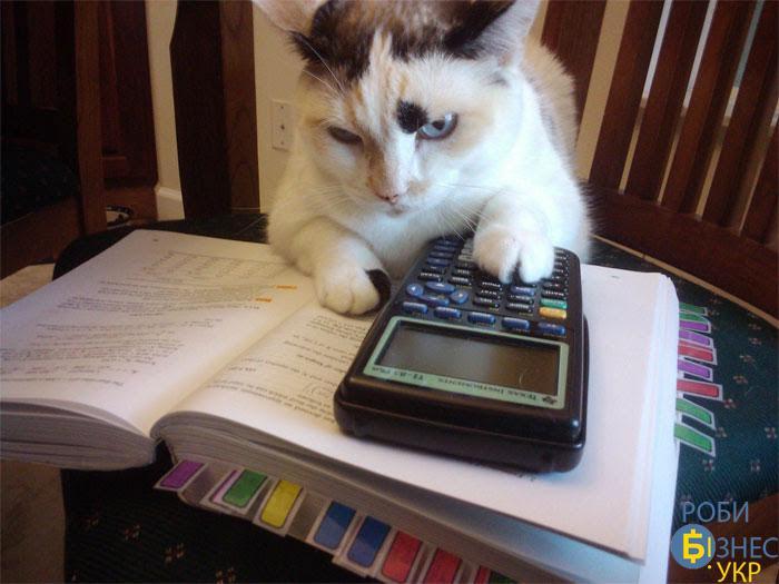 Як контролювати бухгалтера?